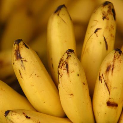 potravinové alergie banány