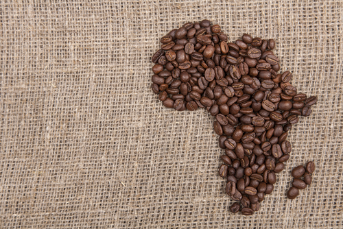 káva pôvod