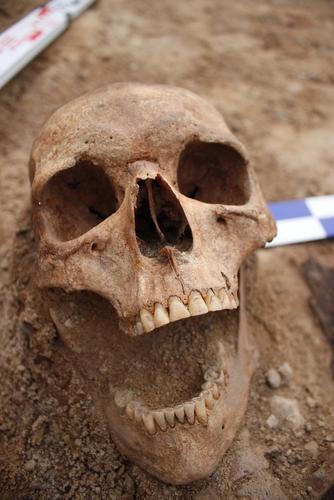 archeológ peter demján ľudská lebka