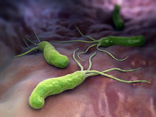 testy na domáce použitie Helicobacter Pylori