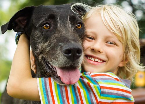 pes a dieťa štastie