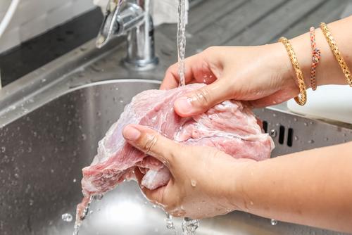 salmonelóza v mäse