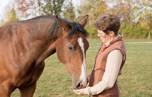 antimikrobialna-rezistencia-na-antibiotika-zvierata