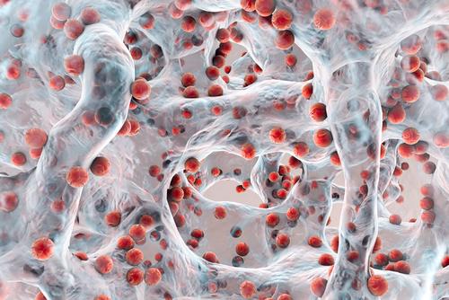 antimikrobialna-rezistencia-na-antiobitika-osn