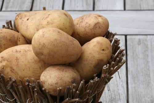 zemiaky skladovanie
