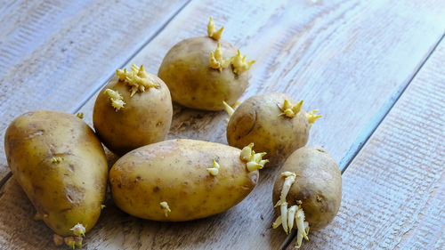 zemiaky chudnutie