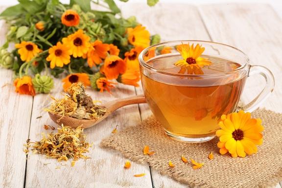 čaj-z-čerstvého-nechtíka