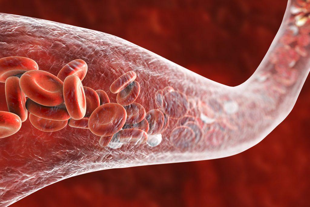 Červené krvinky v cieve