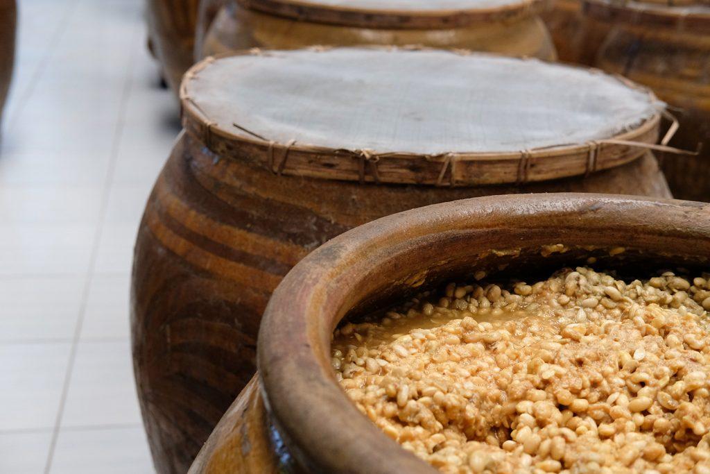 Fermentácia sójových bôbov